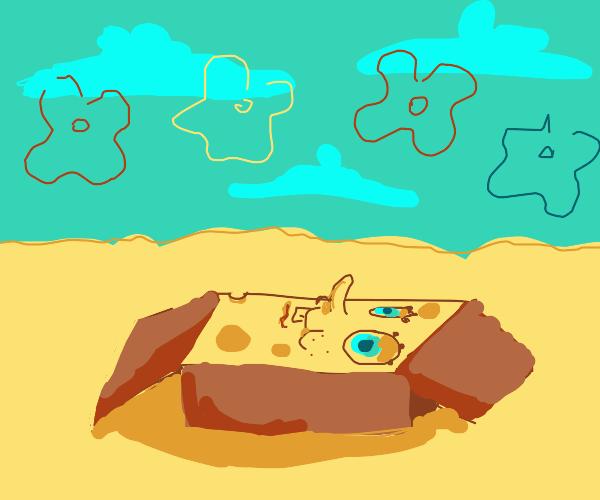 Spongebob in a Package