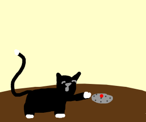 Cat plays with an absolute landmine
