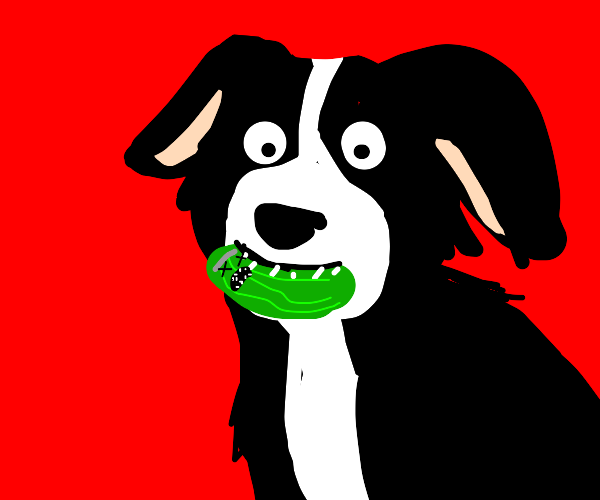 Dog eats a once-sentient pickle
