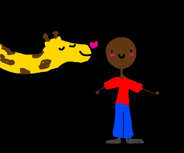 giraffe kisses man