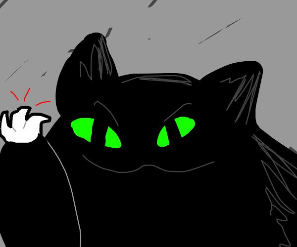 Black Cat Wants To Destroy Your Belongings