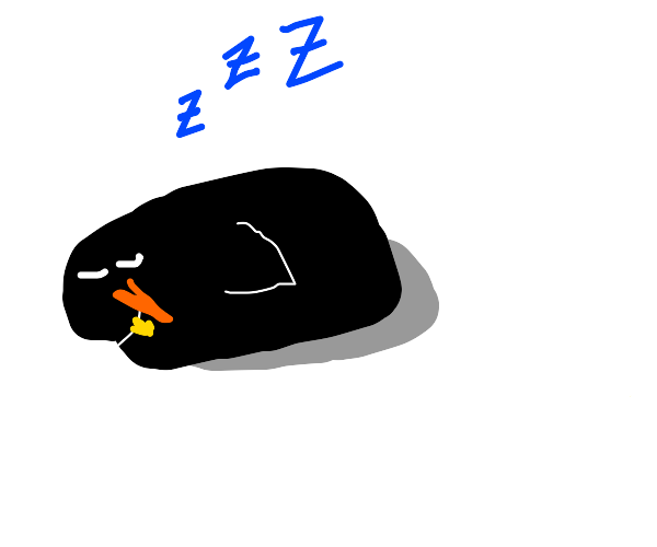 Penguin sleeping