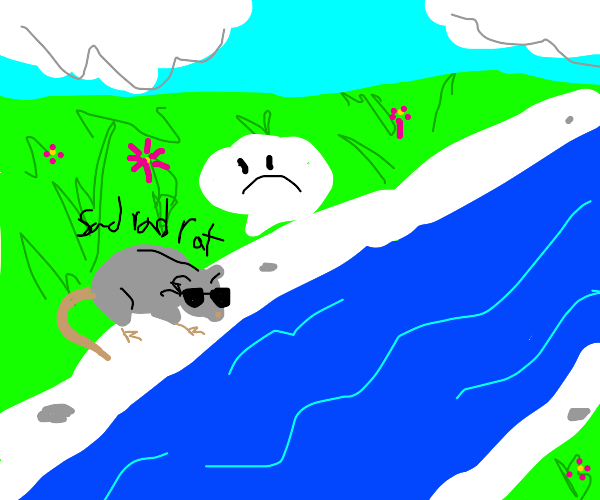 Rad is sad because it can't cross the river