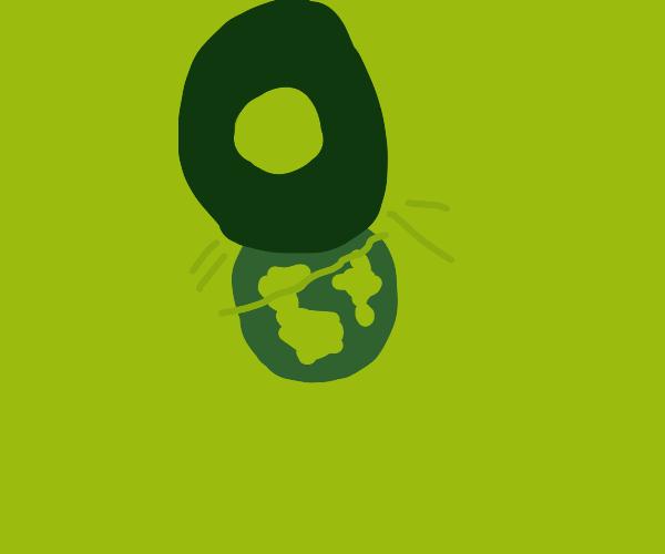avocados conquer the world