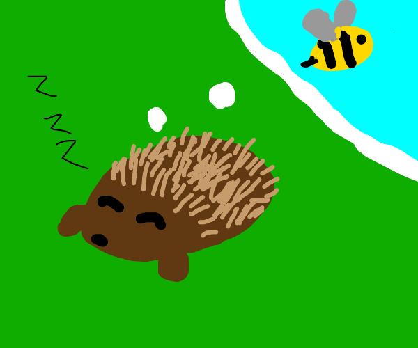 hedgehog dreaming of being a bee