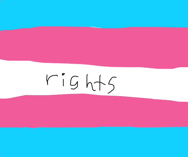 Trans rights!! :D