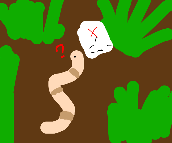 Worm with map is lost