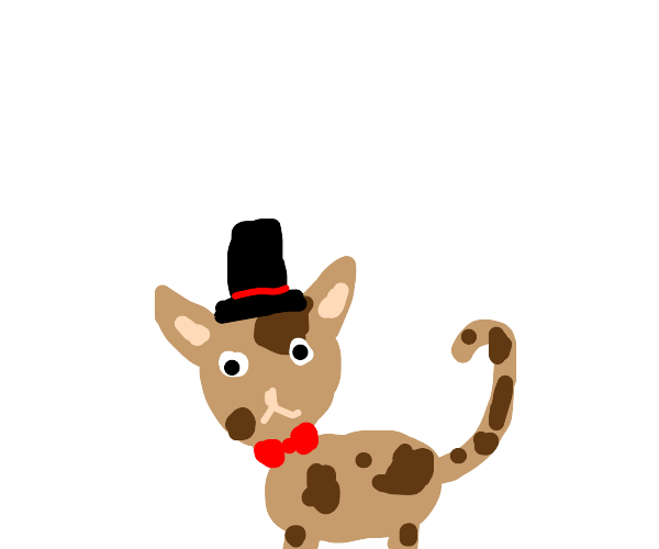 Cute cat in tophat and bowtie