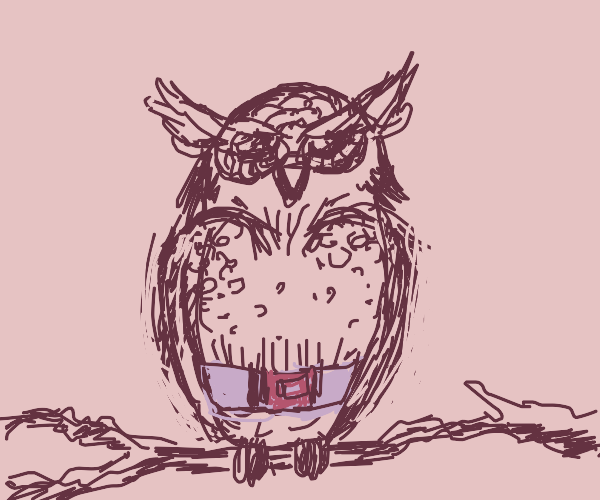 Owl with a belt