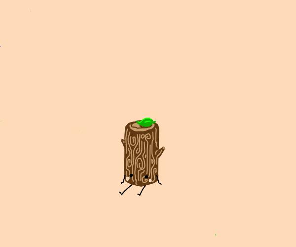 Log with leaf on it