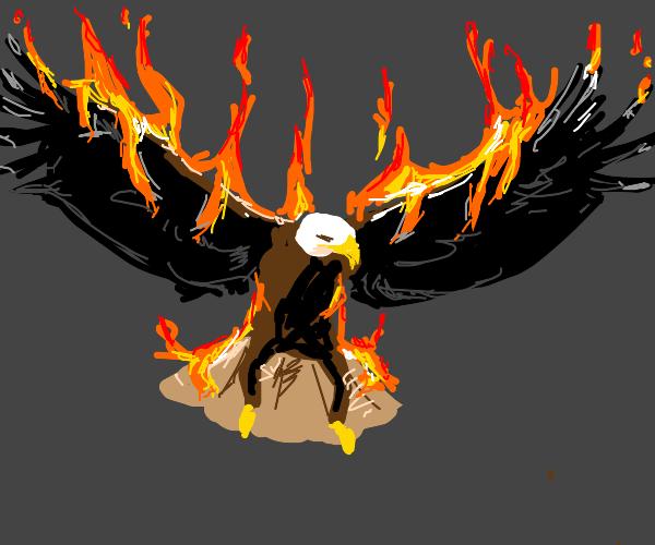 Eagle Burning