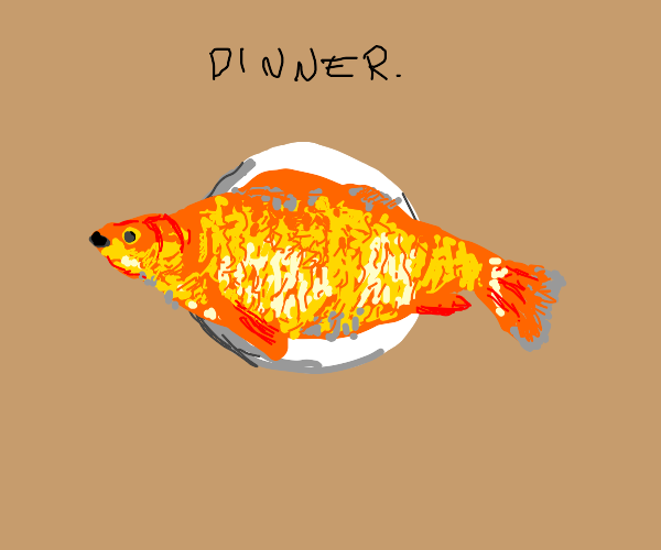 Giant goldfish on a plate