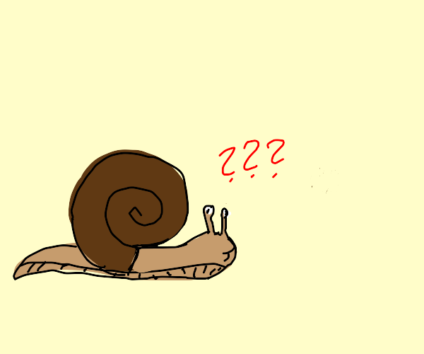 what even is a snail?