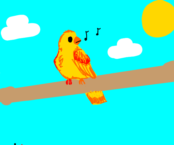 Chirping bird on a perch