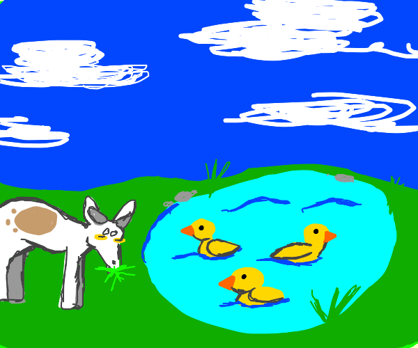 Goat next to a pond with ducks