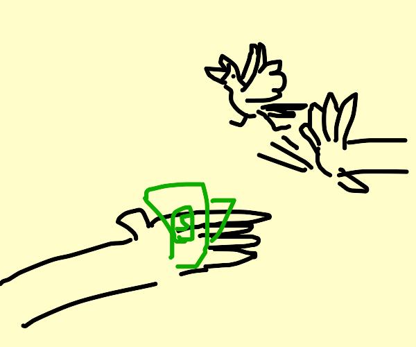 Step one: buy a bird