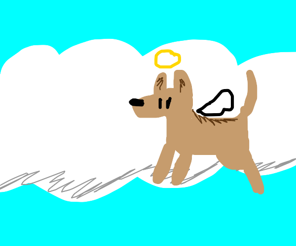 Good dogs go to Heaven.