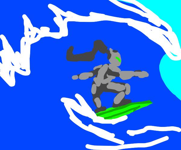 Ninja surfer