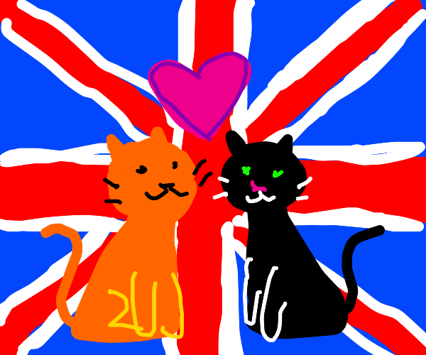 two cats in love next to the british flag