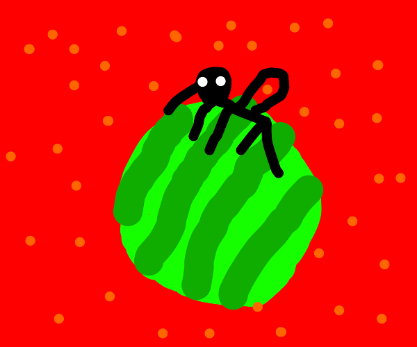 mosquito on watermelon