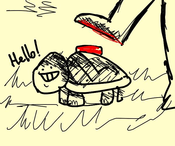 Turtle in a nutshell