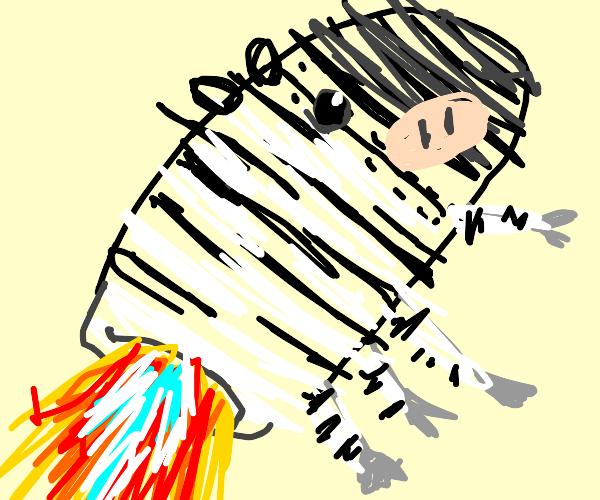 Rocket zebra