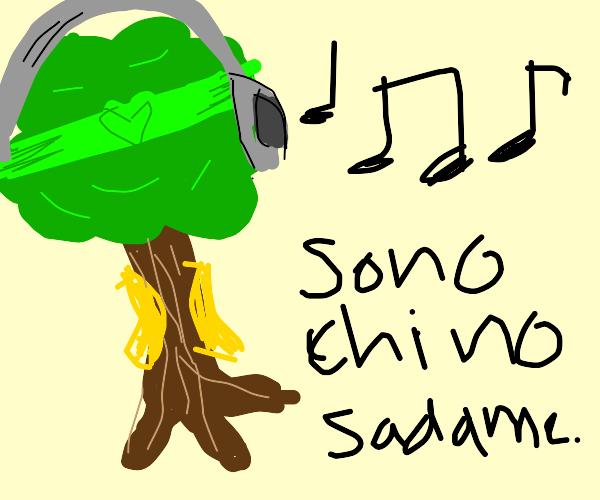 Dio tree listening to music