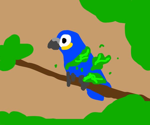 Parrot rapped in neon lettuce.