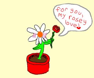 Flower offers offscreen rose a rose.
