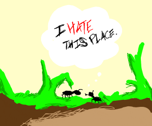 ants hate the earth