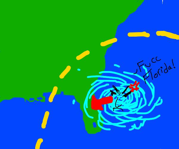 Hurricane hits Florida