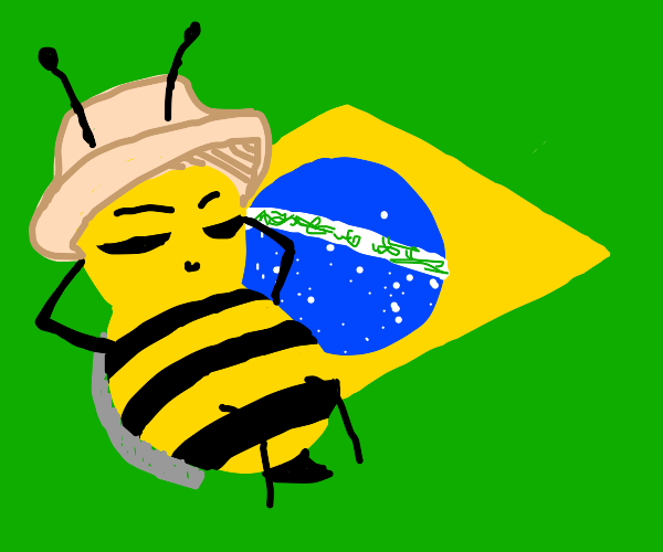 Bee goes to Brazil
