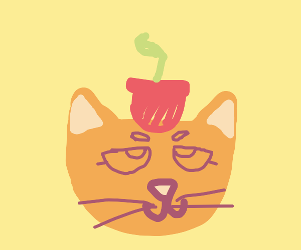 Cute cat with a plant on his head