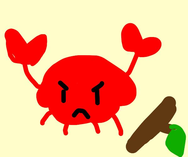 crab angry at stick