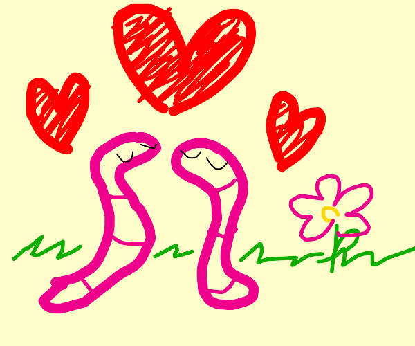 Two worms in love