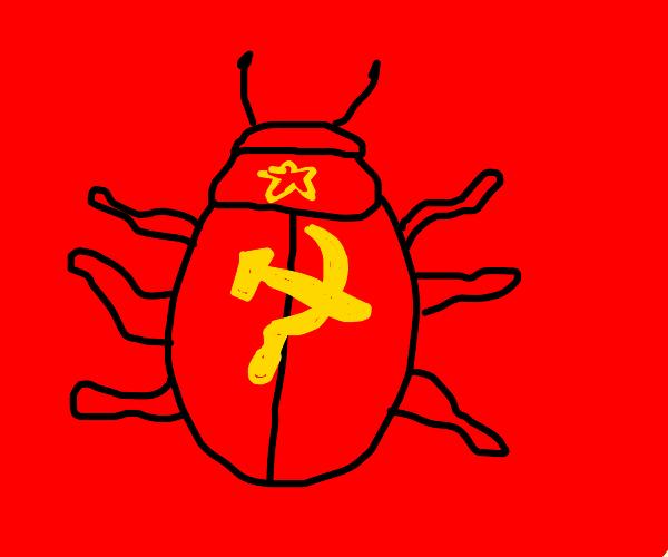 Communist beetle
