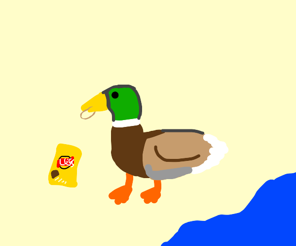Duck eating chips