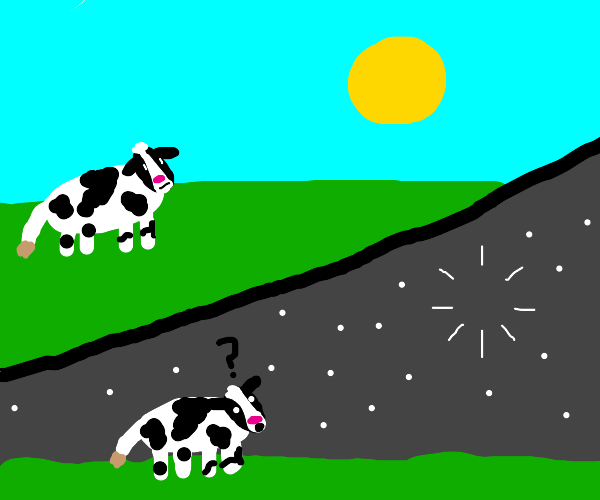 Cow confused about the sun's disappearance