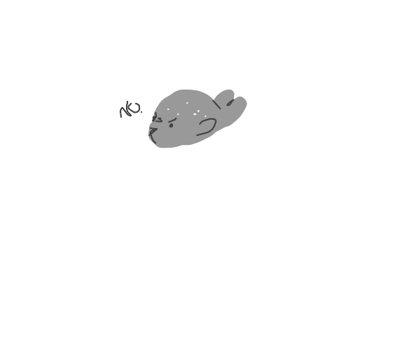 Seal is not having it