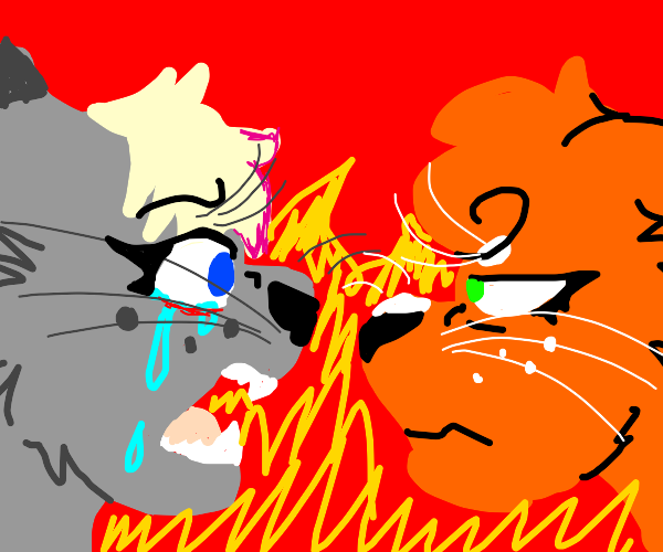 animatoon meemes in nutshell
