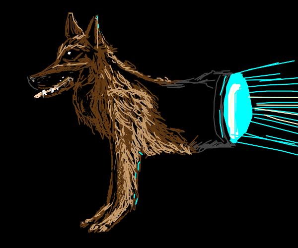 Front half doggo, back half flashlight