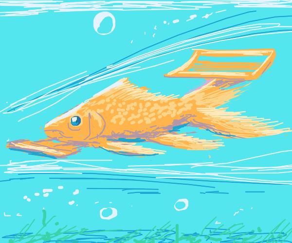 speedster goldfish