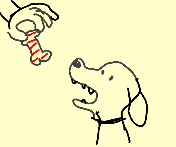 Dog wants to chew toy