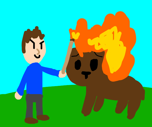 man sets bear on fire