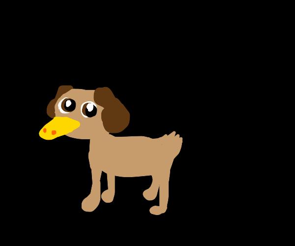 dog/duck?