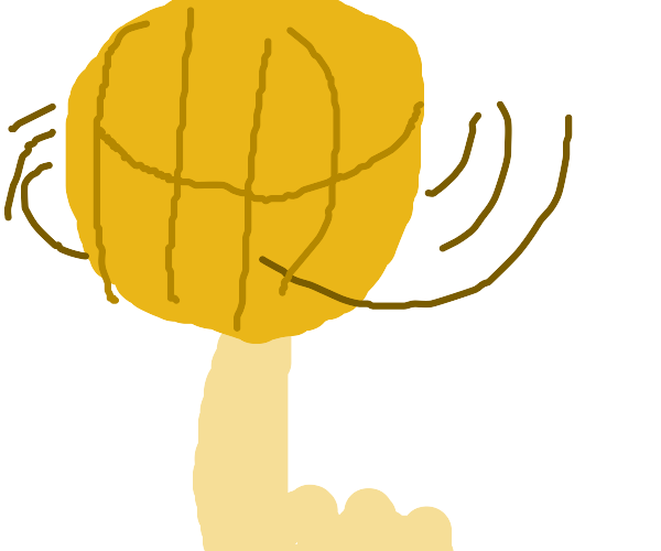 Spinning basketball on finger