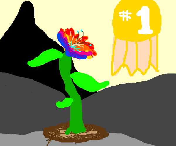 The most colorful flower award