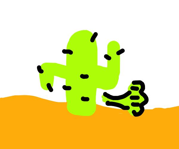 Farting cactus