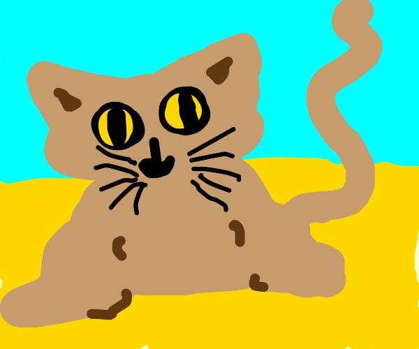 Big Sand Cat