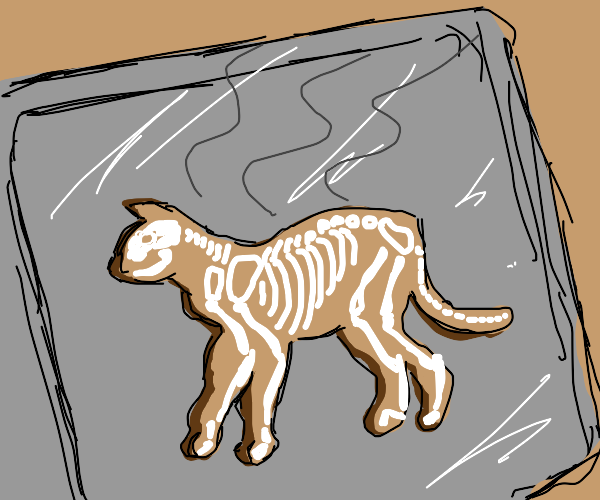 Gingerbread skeleton cat